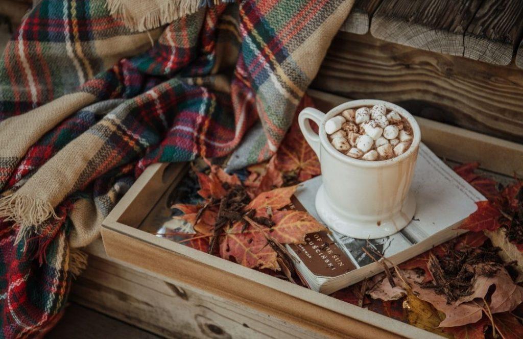 Fall Comforts | Style Maker Fabrics